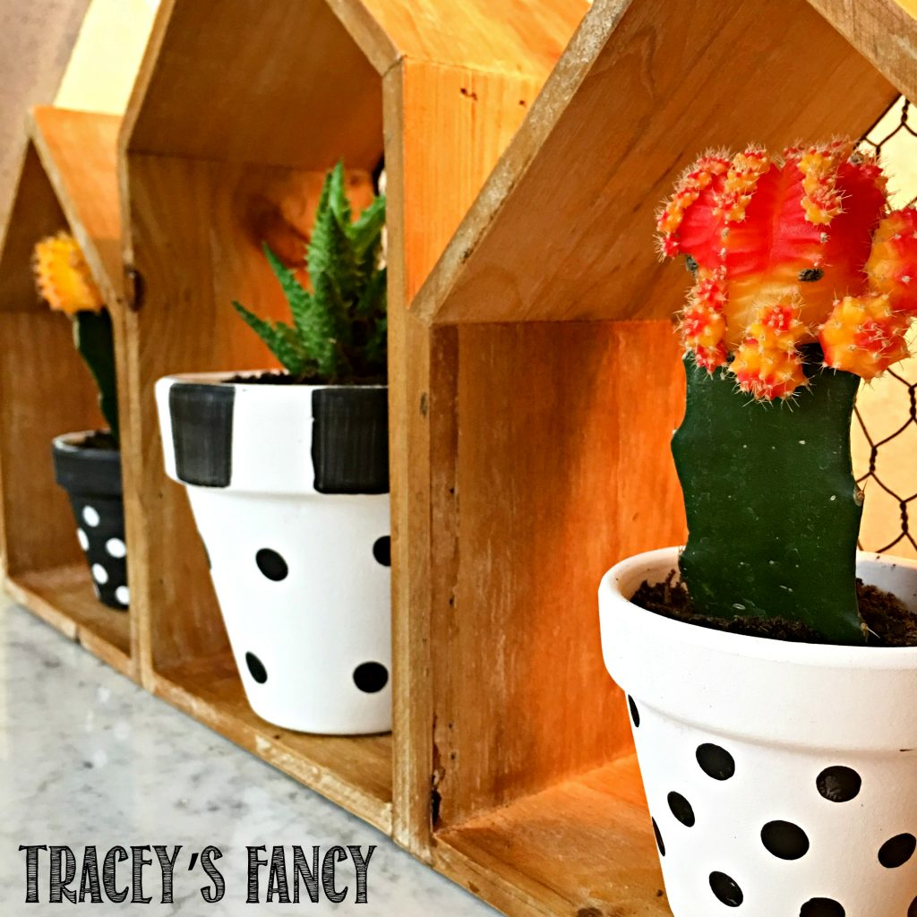 Black and White Cactus Decor + DIY Succulent Garden by Tracey's Fancy