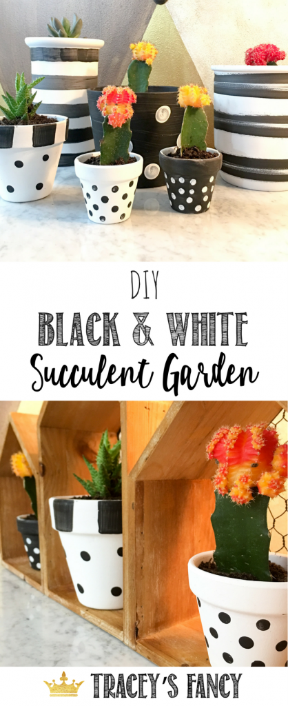 DIY Black and White Succulent Garden with painted pots by Tracey's Fancy | Container Gardening Ideas | Plant Tablescape