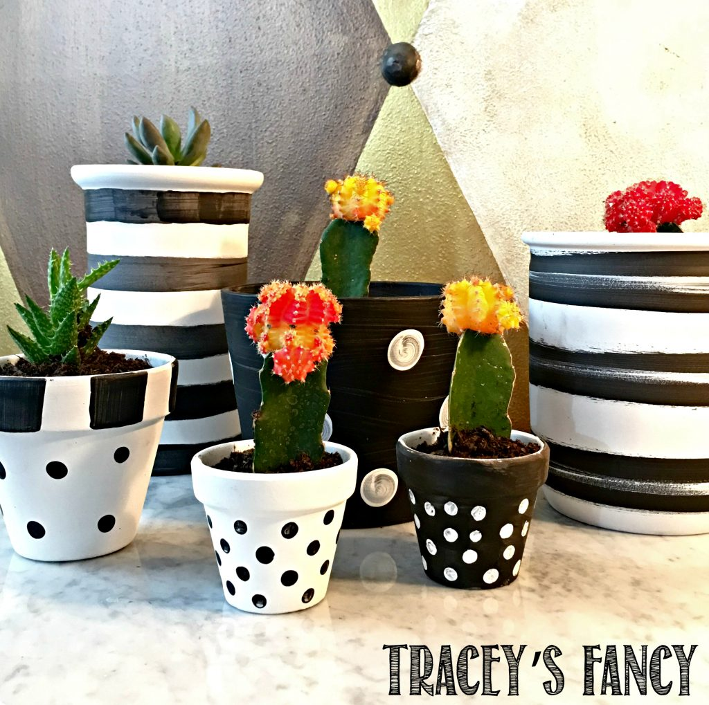 crazy about cactus decor funky decorating ideas by tracey 39 s fancy. Black Bedroom Furniture Sets. Home Design Ideas