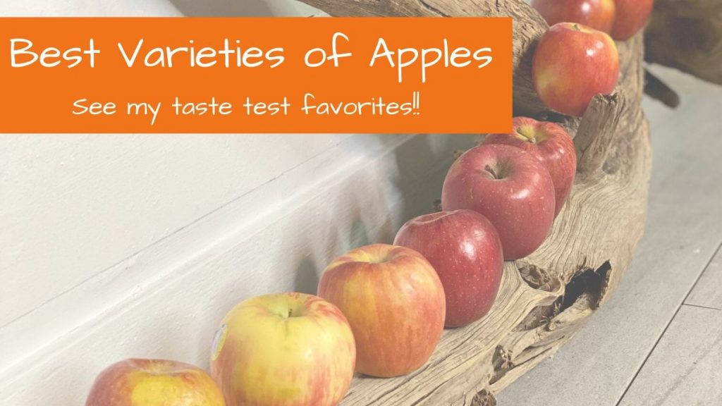 Favorite Apple Varieties: taste test results revealed  by FitFiftyandFearless.com